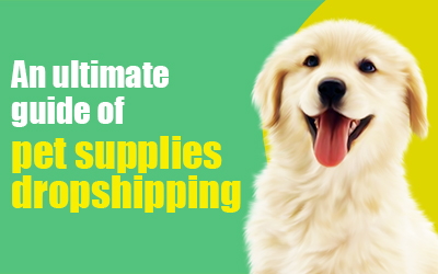 An Ultimate Guide of Pet Supplies Dropshipping